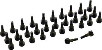 TruVativ Holzfeller Pedal Replacement Pins (32 Pieces)