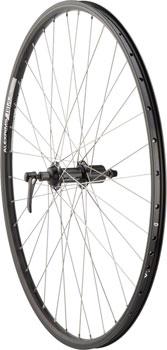 Quality Wheels Rear Wheel Mountain Rim 700c 135mm 36h Alex DH19 Black / Shimano Deore Black / DT Factory Silver